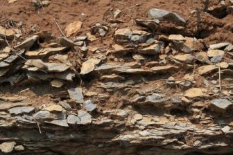 heavy clay soil with embedded rock