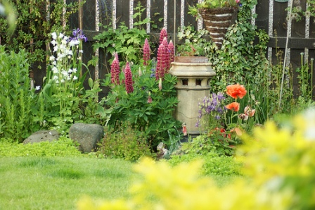 plant texture helps to create interest in a perennial garden