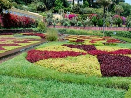 Examples Of Split Complementary Colors garden color schemes
