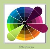 Split Complimentary Garden Color Schemes Tend To Give A Twist They Use One On The Wheel Directly Across From Two Colors That Are