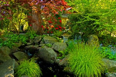 beautiful garden with artificial stream