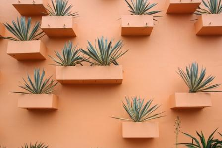 dramatic use of color values with wall planters