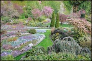 Color Values Restful Landscape
