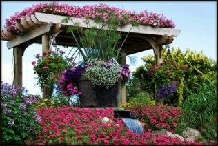 Color Values Trellis with Annuals