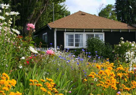 Contemporary Cottage Garden