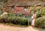Historical Cottage Garden Picture