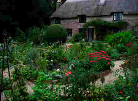 Thomas Hardy Historical Cottage Garden