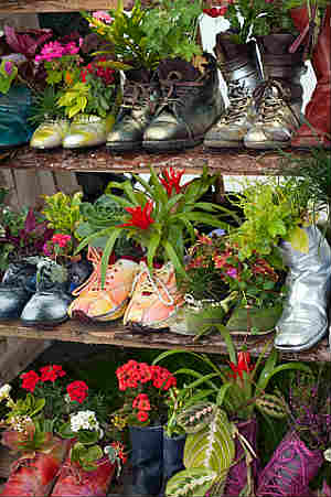 Painted shoes as planting containers