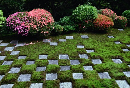 unique treatment of garden pavers and moss creates an interesting focal point