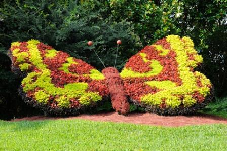 butterfly garden folly