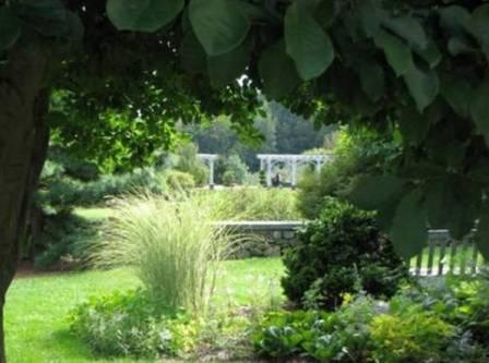 framing a garden view can create a welcome sense of enclosure in the garden