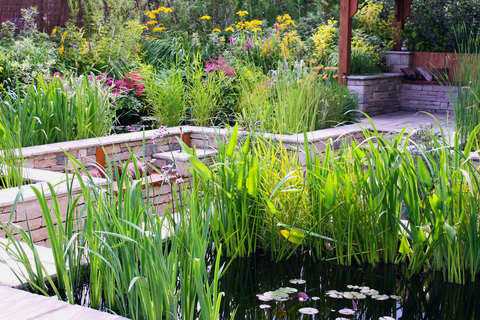 contemporary garden pond in a small garde