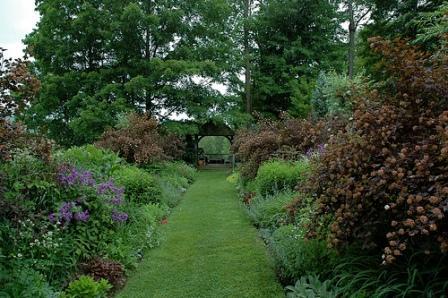 garden pictures of Hayward Garden