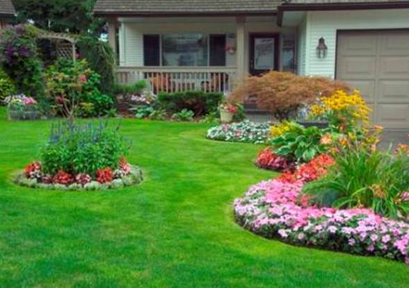 rules of composition for garden design, Beautiful flower