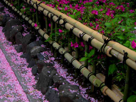 An elegantly crafted bamboo fence makes a great garden borde