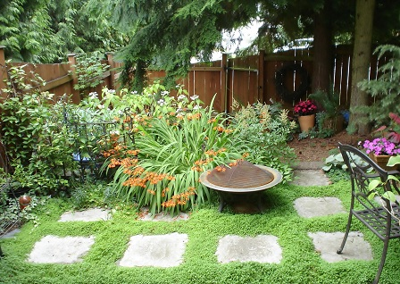Easy gardening make it low maintenance for Back garden simple designs