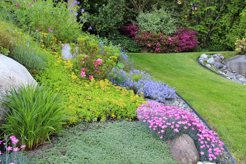 exposing garden splendor fresh ideas for your home garden