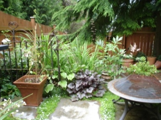 small garden designs require good space planning