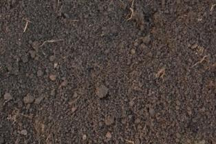 an example of loamy soil