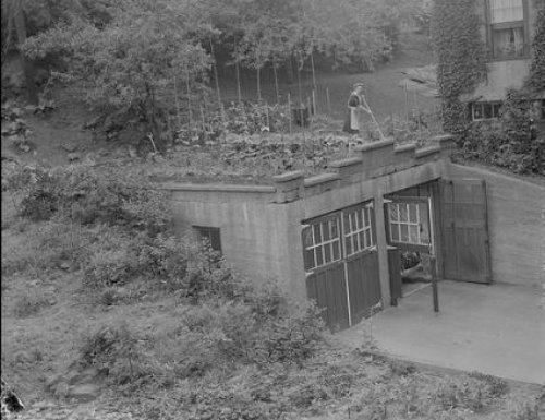 1940s Rooftop Victory Garden