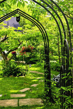 Use a garden arch to create a vertical elemen