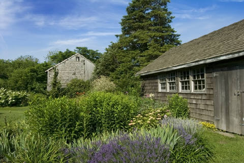 Country Garden Shed and Garden