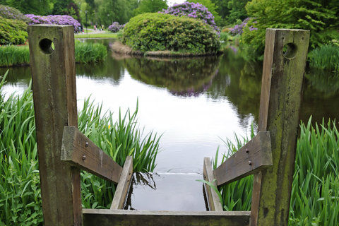 Country Garden Pond