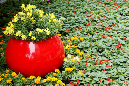 bright red planting container