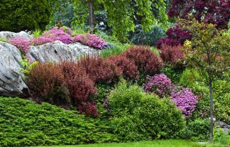 colorful plant combinations used as a garden focal point