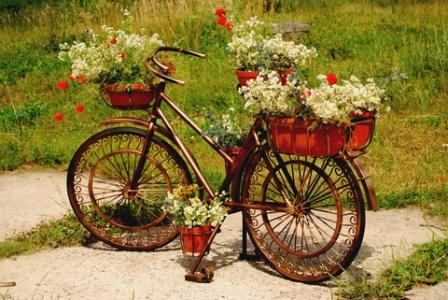 artistic old bicycle used as a garden focal point