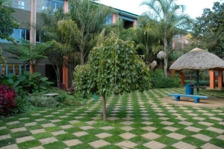 garden pavers used in an unusual manner to create a strong garden space