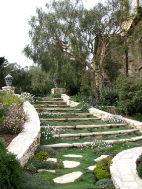 garden stairs with woolycreeping thyme