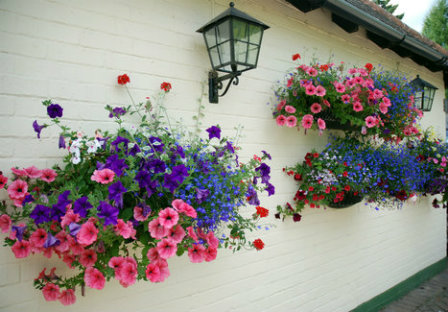 Add hanging baskets to your walls to add vertical interes