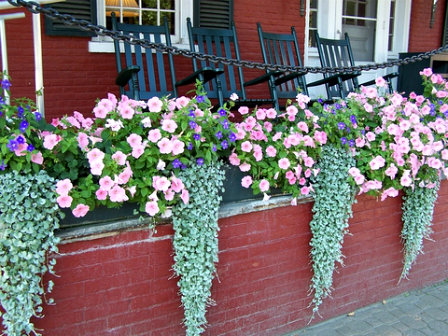 use planter boxes to enliven a garden wal