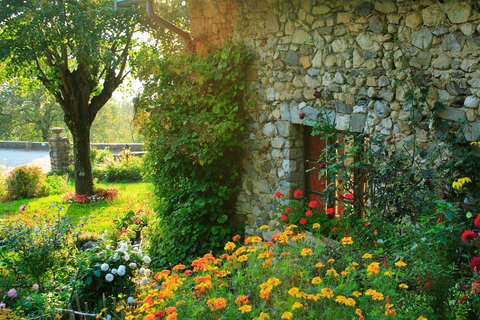 Country Garden in Afternoon Light