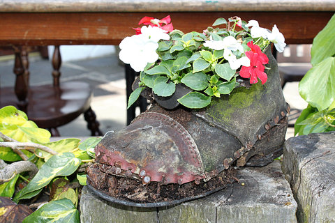 Salvaged Garden Shoe Planted with Impatiens