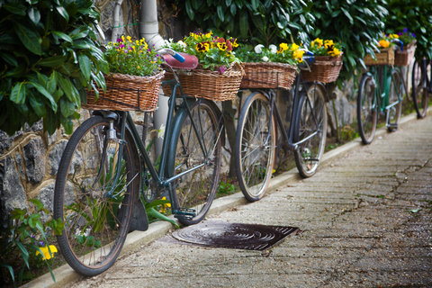 Bicycle Baskets used as planters