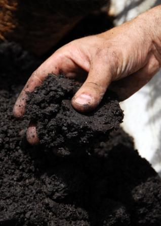 photo of good soil tilth